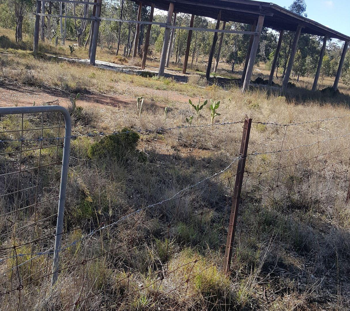 Lots 1 & 95 Big Hill Rd, Thanes Creek QLD 4370, Image 1