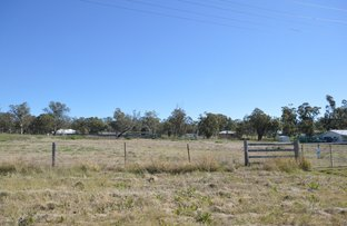 Picture of 2766 Leyburn Cunningham Road, Pratten QLD 4370