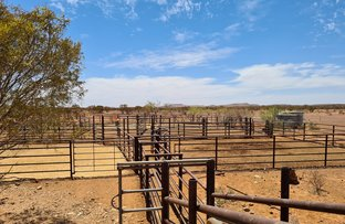 Picture of Maroonah & Mangaroon Station, Gascoyne Junction WA 6705