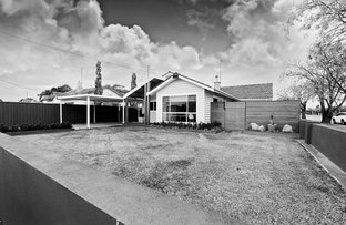 Picture of 51 McKinlay Street, Echuca VIC 3564