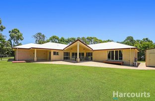 Picture of 7 Buttress Court, Burpengary East QLD 4505