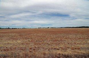 Picture of 201 Chapman Road, Moonta Bay SA 5558