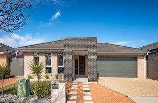 Picture of 16 Jeannie Gunn Street, Franklin ACT 2913