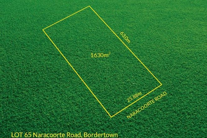 Picture of Lot 65 Naracoorte Road, BORDERTOWN SA 5268
