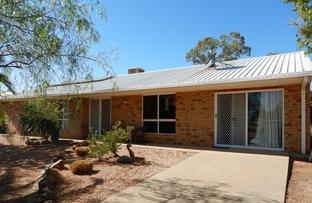 Picture of 28  Cardinal Rd, Lightning Ridge NSW 2834