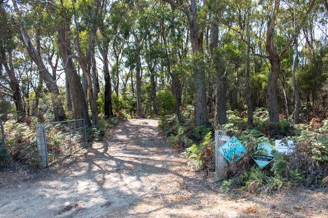 Picture of 589 Cloudy Bay Road, SOUTH BRUNY TAS 7150