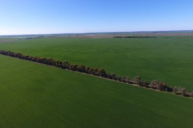 Picture of 0 Turriff, MORUNDAH NSW 2700