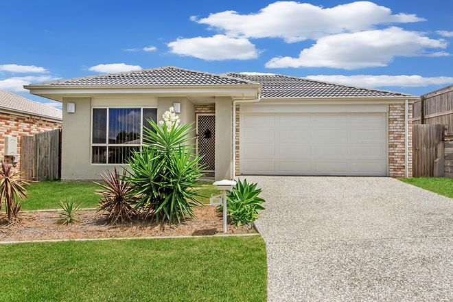 Picture of 17 Hasemann Crescent, UPPER COOMERA QLD 4209
