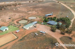 Picture of 1290 Petro Mail Road, Arumpo NSW 2715