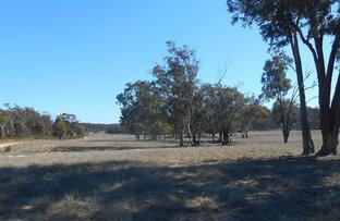 Picture of Lot 29 via 497 HULKS ROAD, Merriwa NSW 2329