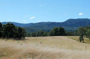 1146 Lynches Creek Road, Lynches Creek, Kyogle NSW 2474