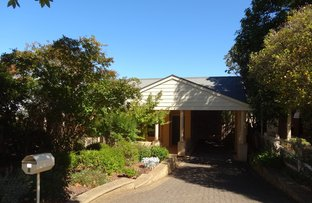 Picture of 8 Jenkins Avenue, Myrtle Bank SA 5064