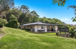 Picture of 94 Hunters Hill Road, Corndale NSW 2480
