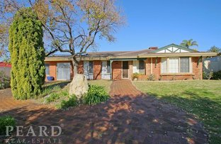 Picture of 4 Le Souef Drive, Kardinya WA 6163