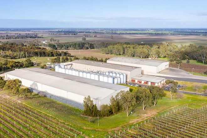 Picture of Stonehaven Winery, 7089 Riddoch Highway, PADTHAWAY SA 5271