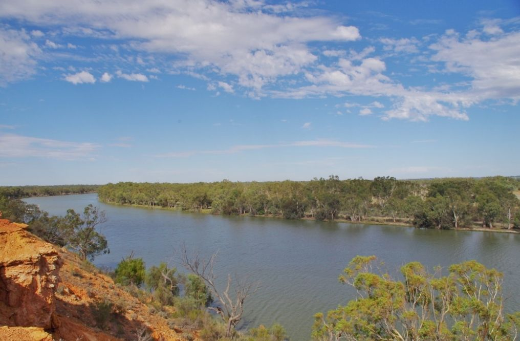 Lot 24 Rover Crescent, Paringa SA 5340, Image 2