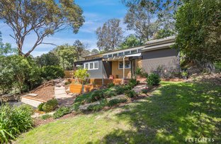Picture of 40 Melbourne Hill Road, Warrandyte VIC 3113