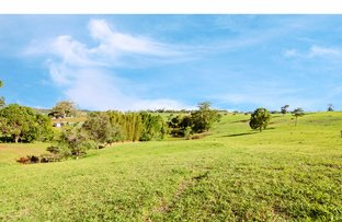 Picture of 2 Azalea Court, Maleny QLD 4552