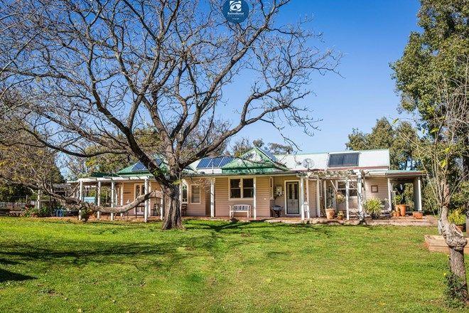 Picture of 536 Copeton Dam Road, GUM FLAT NSW 2360