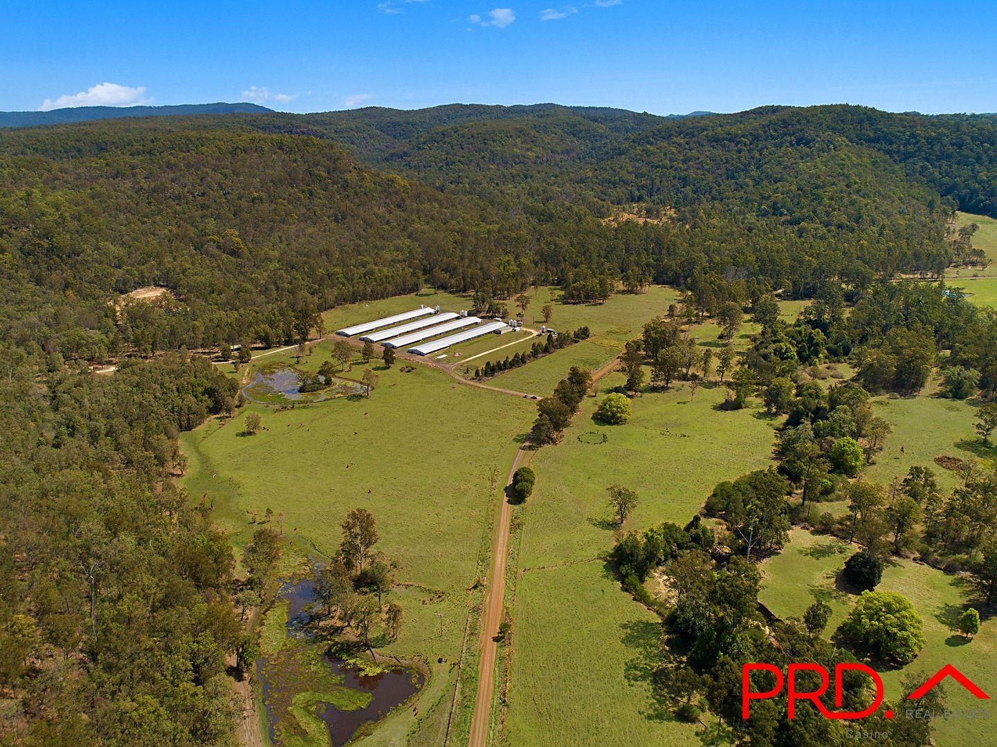 2050 Upper Mongogarie Road, Upper Mongogarie NSW 2470, Image 1