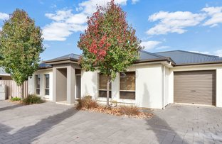 Picture of 1, 45A York Terrace, Salisbury SA 5108