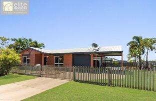 Picture of 17 Lyell Court, Wulguru QLD 4811