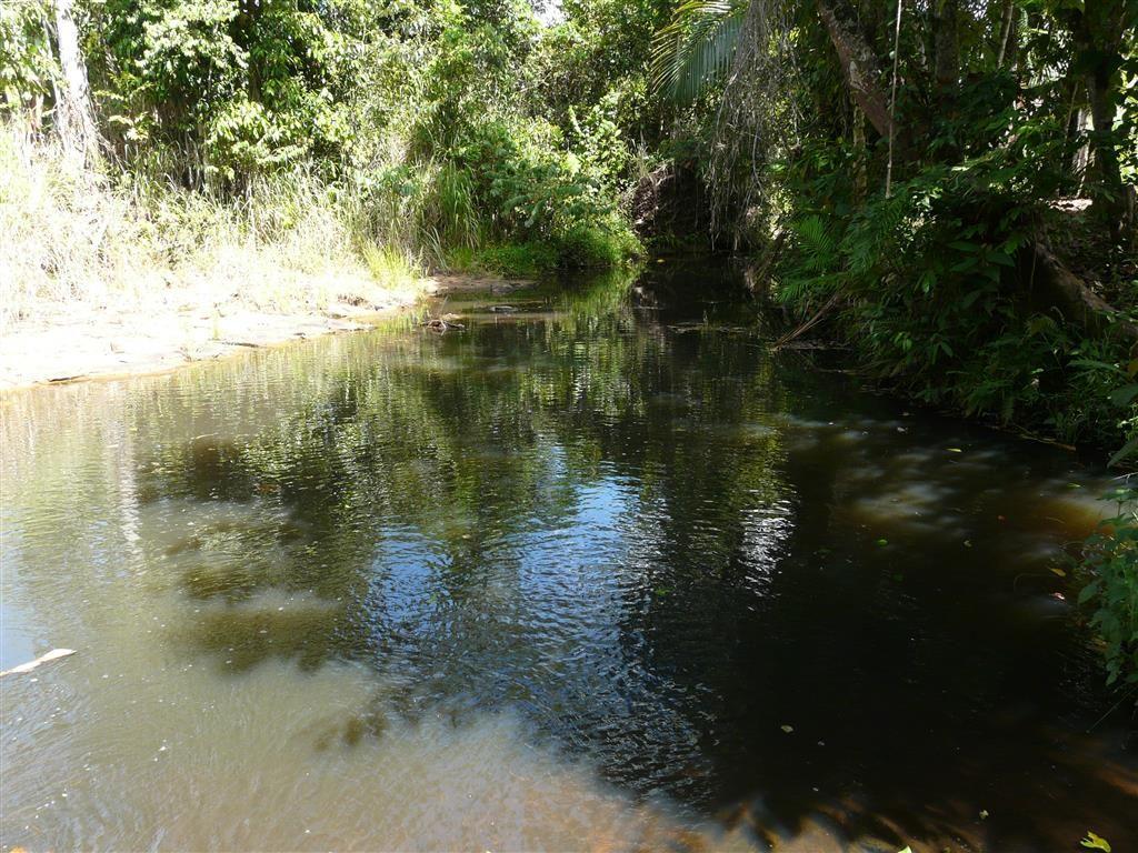 Lot 1 Meuanbah, BOMBEETA QLD 4871, Image 1