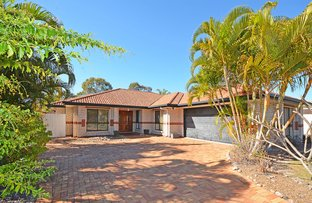 Picture of 3 Oriole Court, Eli Waters QLD 4655