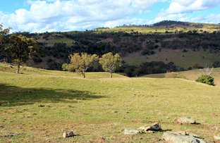 Picture of 436 Davis Creek Road, Rouchel NSW 2336