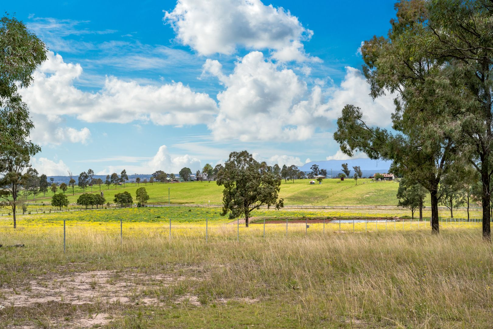Lot 12 Glendon Road, Singleton NSW 2330, Image 1