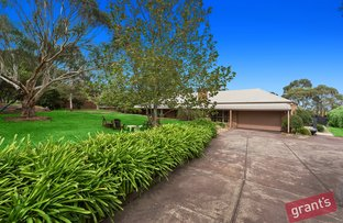 Picture of 45 Robinson Road, Narre Warren North VIC 3804