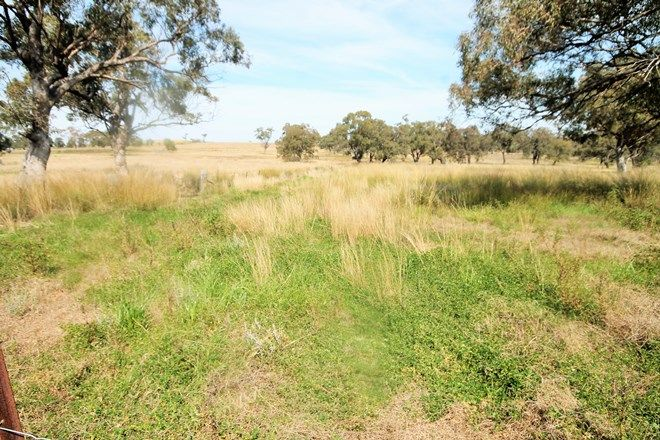 Picture of 127, Lot Hall Road, MERRIWA NSW 2329