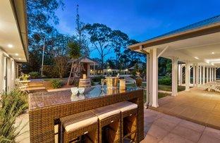 8 Killawarra Road, Duffys Forest NSW 2084