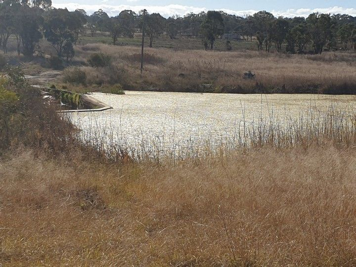 Lot 1 New England Highway, Stanthorpe QLD 4380, Image 1