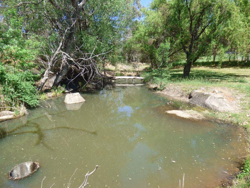 120 Ratho Road, Young NSW 2594, Image 1