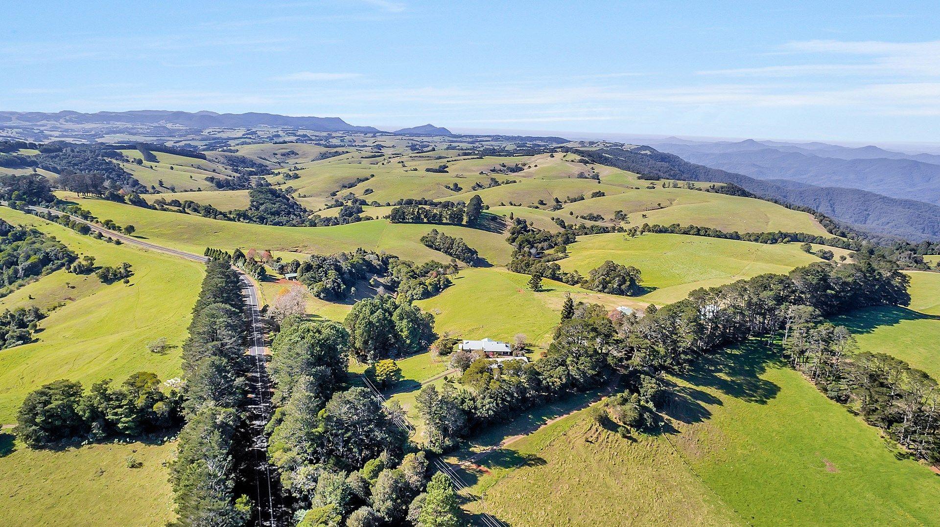 5265 WATERFALL WAY, Dorrigo NSW 2453, Image 1