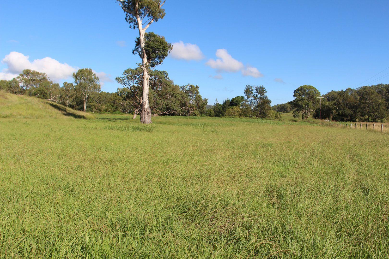 0 Widgee Creek Road, Hillview QLD 4285, Image 2