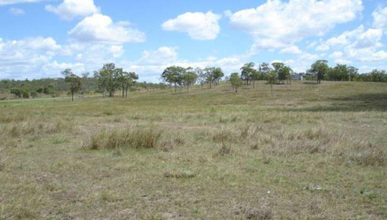 Calliope QLD 4680, Image 1