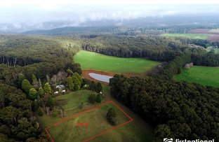 Picture of 8 Cherrys Lane, Toolangi VIC 3777