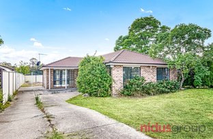 Picture of 93 Colebee Crescent, Hassall Grove NSW 2761