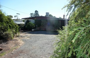 Picture of 7 QUELQUELLING ROAD, Northam WA 6401
