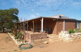 Picture of 959 North West Coastal Highway, Kingsford WA 6701
