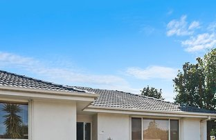 Picture of 304B Warrigal Road, Cheltenham VIC 3192