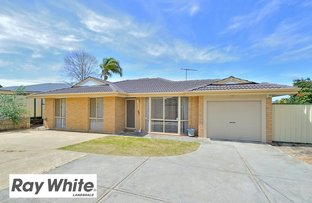 Picture of 4B Cradle Close, Alexander Heights WA 6064