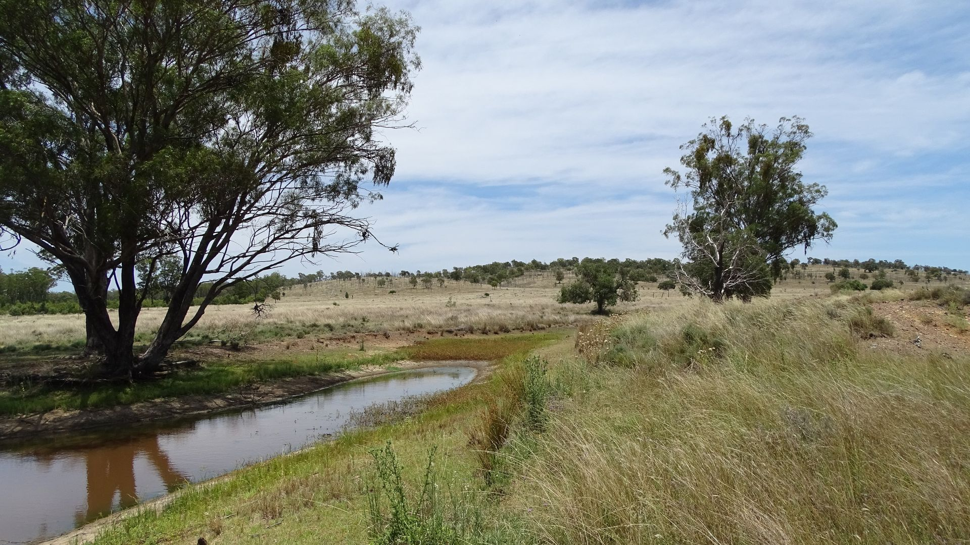 Lot 120 Stonehenge Road, Millmerran QLD 4357, Image 1
