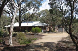 Picture of 43 Greenup St, Stanthorpe QLD 4380