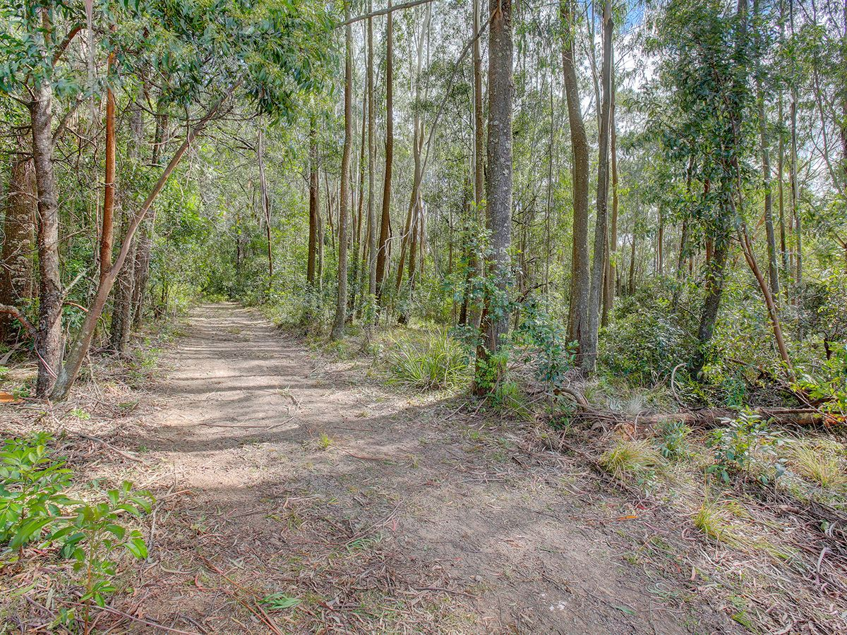 Lots 63, 144, 145, 153, 154 & 173 Mount Scanzi Rd, Kangaroo Valley NSW 2577, Image 1