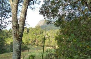 929 Blue Knob Road, Lillian Rock NSW 2480