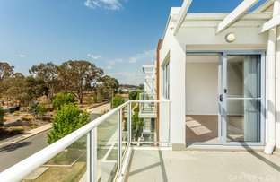 Picture of 42/4 Thadoona Street, Crace ACT 2911