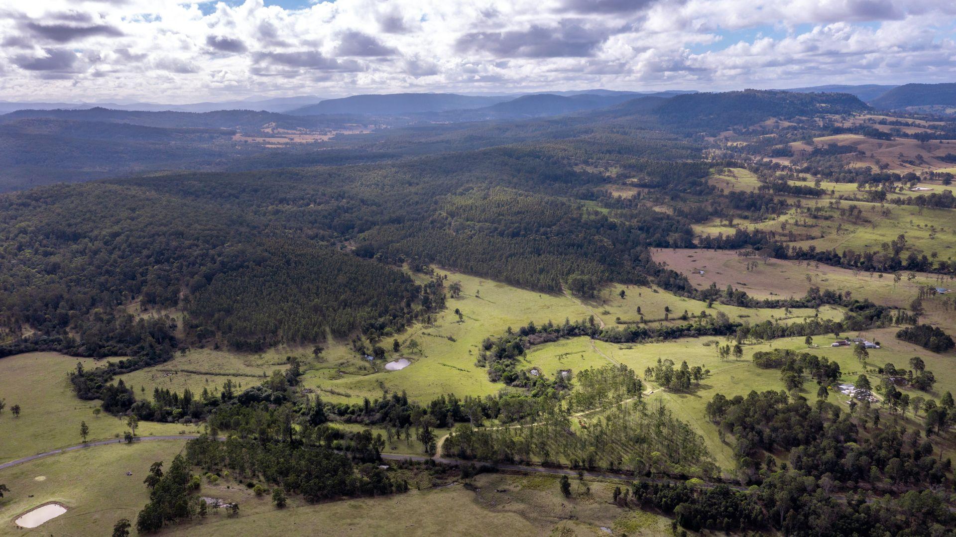 624 Tabulam Road, Lower Bottle Creek via, Tabulam NSW 2469, Image 1